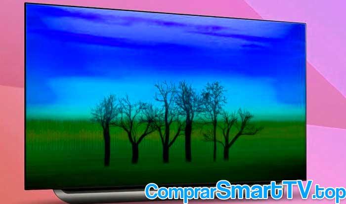 """LG OLED55C8PLA -Smart TV de 55"""" OLED UHD 4K"""